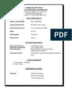 Curriculum Vitae Alex Noe Medina Rodriguez