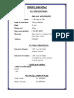 Curriculum Vitae Irvin Joel Arzu Robledo