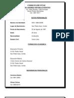 Curriculum Vitae Javier Andres Rivera Fuentes