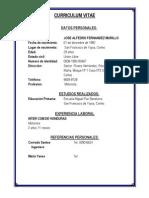 Curriculum Vitae Jose Alfedro Fernandez Murillo
