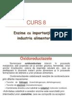 CURS 8 - Enzime
