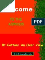 Btgene[1].cotton1