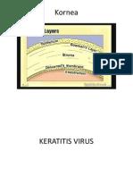 Keratitis Virus