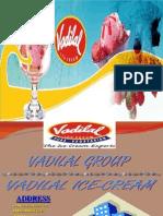 Vadilal Final Distribution Business Ice Cream
