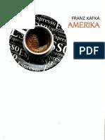 Amerika.pdf