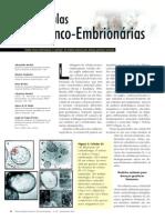Celulas tronco embrionarias