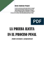La+Prueba+Ilicita+en+El+Proceso+Penal+Libro+316p
