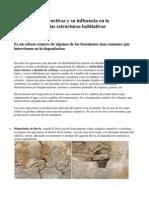 Patologias Constructivas y Su Influencia en La Conservacion de Las Estructuras Habitativas