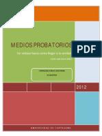 Medios Probatorios