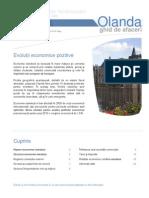 Olanda Ghid de Afaceri 201034205323