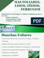 MANCHAS FOLIARES, MÍLDIOS, OÍDIOS, FERRUGEM