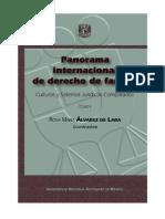 Panorama Internacional de Derecho de Familia - Tomo i
