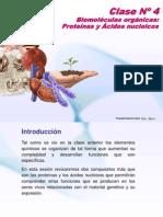 Clase Moleculas Organicas Proteinas y Ac Nucleicos