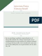 2231 10 Camara Gesell Peru