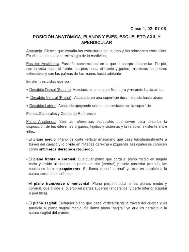 Lujo Mejores Tarjetas Flash De La Anatomía Para Estudiantes De ...