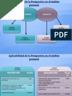 Aplicabilidad de La Prospectiva en El Ambito Personal-Alexis Galindez