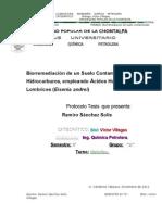 Biorremediacion de Un Suelo Contaminado Con Hidrocarburos Empleando Acidos Humicos y Lombrices