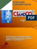 huesoscraneofaciales ISEM