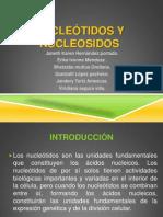 _Nucleótidos
