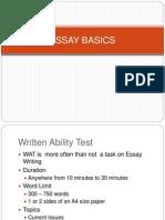 Essay Basics 2013