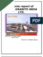 Interim Report of AGIL