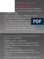 NEUROPSICOLOGÍA FUNCIONAL.pptx