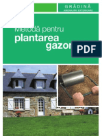 Plantare-gazon