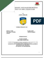 market survey and sales promotion strategy of Amul liquid dahi