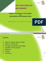 AdvancedTreePrompt_ReportStudio