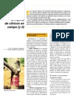 injerto en citricos.pdf