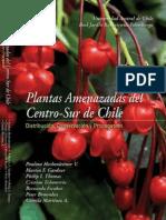 Plantas Amenazadas Del Centro Sur de Chile Distribuci n Conservaci n y Propagaci n
