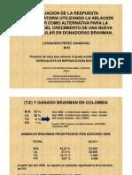 Produccion de Embriones Usando La Ablacion Folicular Por Aldemar Chavez