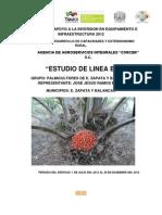 Diagnostico Del Grupo de Productores Palmicultores de e. Zapata y Balancan Del Municipio de Balancan Tabasco