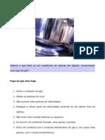 Documento Gas