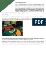 Universitario.pdf