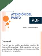 ATENCIÓN DEL PARTO-GRR IMSS
