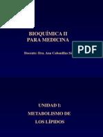 Bioquimica C1
