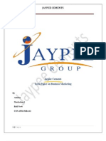 Term Paper Jaypee Cements