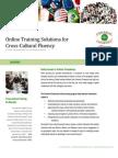 Online Cross-cultural Training
