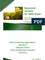 Biocontrol Para Problemas de Uva de Mesa