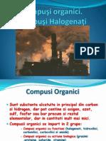 Compusi Organici Halogenati