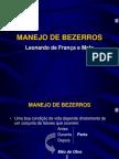 Manejo de Bezerros