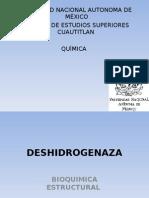 Deshidrogenasa.ppt