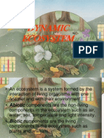 dynamicecosystem-090807111724-phpapp01