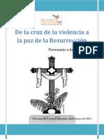 Novenario-Cruz-2011.docx