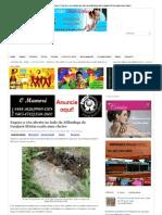 Jornal – O Mamoré - esgoto a céu aberto em guajará-mirim 25 janeiro 2013 parte 2