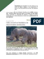 Los países de Latinoamérica han decidido ser mas activos en la protección de especies de flora y fauna