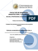 Trabajo de Investigacion - Terminos de Referencia Pip - Puente