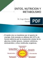 Clase Alimentacion Nutricion Metabolismo