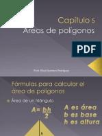 Cap_5_Areas.ppt